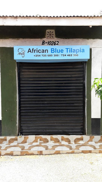 African Blue - Poa Tilapia - Our new shop at the K-City Business Park
